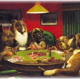 sobaki-v-poker