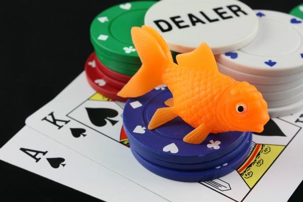 Ловля китов на малька в покере